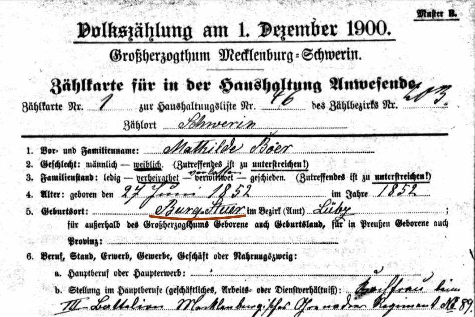 Geboren auf Burg Stuer, ein Geburtshinweis von 1852,Volkszählung von 1900