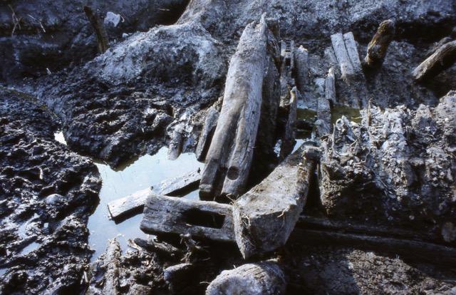 Stuer, Wasserburg, Freilegung von mittelalterlicher Wegeführung und Brückenkonstruktion am 3.8.1985 durch 29 ehrenamtliche Bodendenkmalpfleger, Foto: Archiv S.Weckwerth