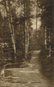 Bad Stuer,angelegte Wege um 1900, Postkarte