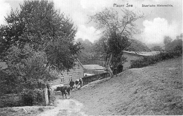 Stuer Hintermühle, Postkarte um 1900, gelaufen 1913,inzw.zum Straßenbau abgetragener Hügel