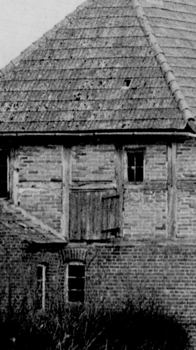 Ursprüngliche Klappe zum Dachgeschoß als Bergeraum, Westseite, Wohn-Stall-Haus eines Erbpachtbauern von 1832 in Stuer/ Mecklenburg