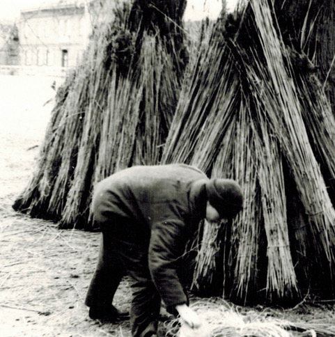Schöfe- Bergung, Buchholz, 1982